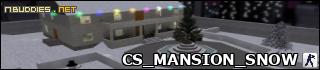 CS_MANSION_SNOW: 40.6/100