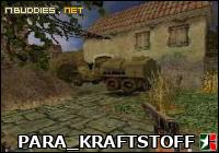 PARA_KRAFTSTOFF: 56.6/100