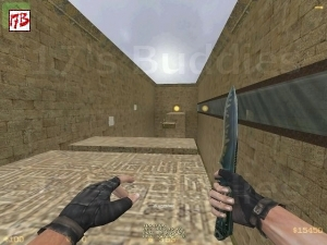 deathrun_slackserv_magnum (Counter-Strike)