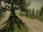 RACE_FOREST