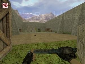aim_headshot_usp