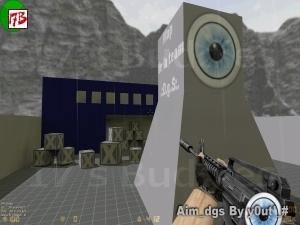 aim_dgs