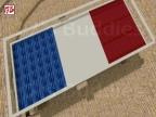 KA_FRANCE_FLAG_ARENA