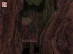 ESCAPE_TO_WHITE_FOREST3