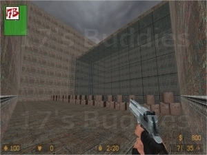 AIM_DEAGLE_CT_T